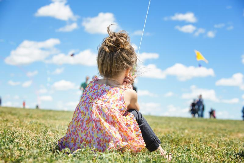 Photos from the SaskPower Windscape Kite Festival 2015