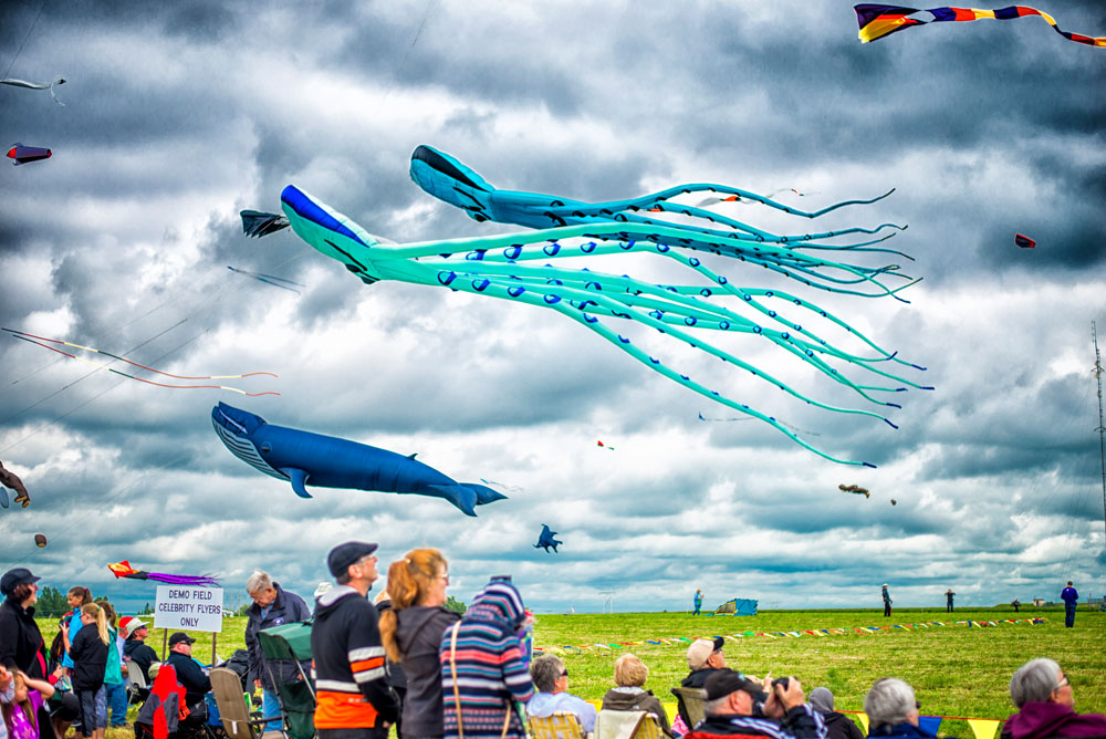 Photos from the SaskPower Windscape Kite Festival 2016
